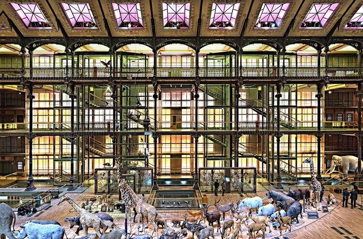 Museum of Natural History in Paris.